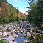 East Branch of the Saco, Intervale, NH