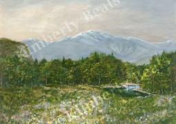 Springtime in Mt. Washington Valley