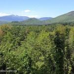 Mt. Washington and Valley